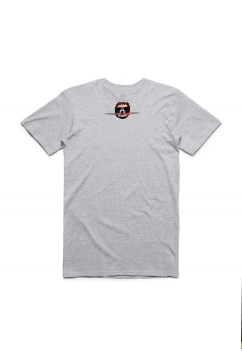 Plane Grey Tshirt by The Screaming Jets